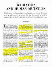 essay evolution of human beings Are we evolving into a new type of human 'different' species will have evolved by 2050, scientist claims this is according to cadell last, a researcher at the global brain institute.