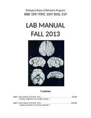 Brain Dissection Manual