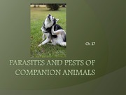 Ch. 17 Parasites and Pests
