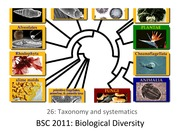 26 Taxonomy and systematics