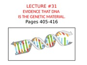 BB_LECTURE-31_DNA is the genetic material_revised