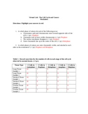 Worksheets Virtual Lab The Cell Cycle And Cancer Worksheet Answers thecellcycleancancerworksheet virtual lab the cell cycle and 4 pages cancer worksheet doc