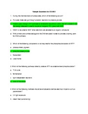 Sample exam2answers