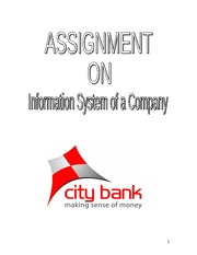 Assignment on City Bank( Mirpur Branch)