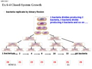 MBIO 3812 Ex 6-4 Closed-System Growth