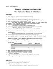 Chapter 13 Active Reading Guide-HB.docx