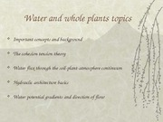 soil plant water relationship