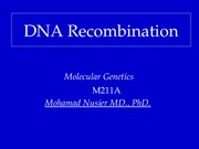 5. Nusier DNA Recombination