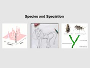 Species and Speciation I