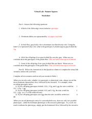 PunnettSquaresWorksheet-1 TURN IN.doc
