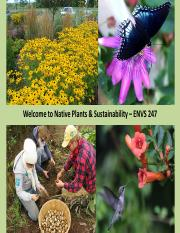 Native plants Lecture 1 - Introduction