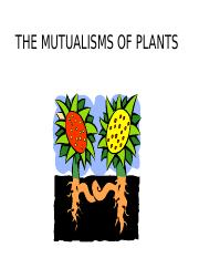 22_MUTUALISM_PLANTS_OUTLINE(1).ppt