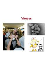 Lecture 6 - Viruses.pdf