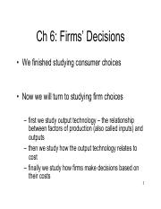 6- Firms Decisions x1