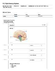 Chapter 7 Quiz Nervous System Quiz.pdf