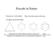 GEOL 130 note Fractals in Nature