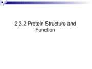2.3.1 protein structure & function-r