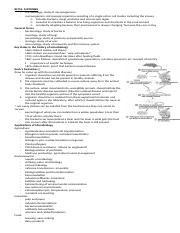 Domains Kingdoms Worksheet Answer Key Answer Key Domain Bacteria