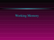 Lecture 9-working memory