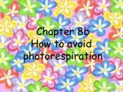 Lecture 8 - Chapter 8b - How to avoid photorespiration.pdf