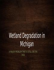 wetland degradation.pptx
