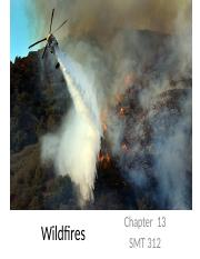 Chapter 13 - Wildfires.pptx