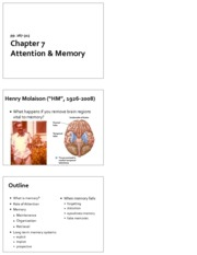 Lecture9_Ch7_Attention_Memory_x3
