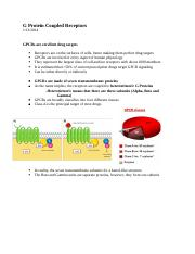 G Protein Coupled Receptors.docx