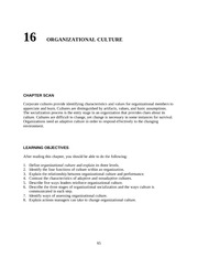 Chapter 16 ORGANIZATIONAL CULTURE teacher resources   nqimch16