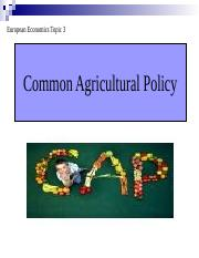 Seminar 3. Common Agricultural Policy