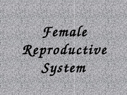 SCI 106 Female Reproductive System OK