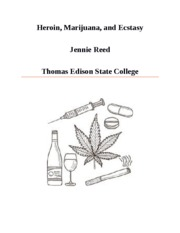 drugs and society research paper