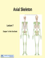 Lecture 7 Axial skeleton.pptm