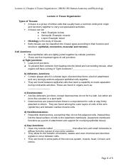 Lecture 4 (Chapter 4) notes