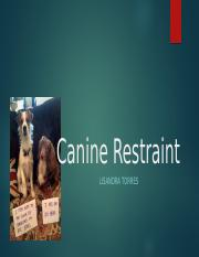 Canine Restraint.pptx