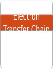 Electron-Transport-Chain.ppt