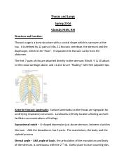 Thorax and Lung Assessment(1)(1).docx