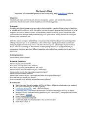 Butterfly Effect Project Guidelines - student .docx