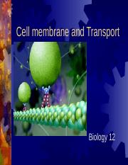 cell membrane Q's.ppt