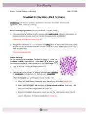 885   Cell Division Answer Key Vocabulary cell division ...