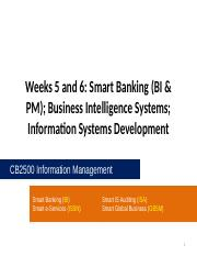CB2500 - Week05 and Week06 - Smart Banking (BI & PM); Business Intelligence Systems; Information Sys