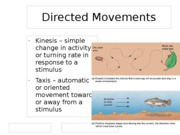 Directed Movements