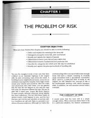 Vaughan (2014) The Problem of Risk.pdf