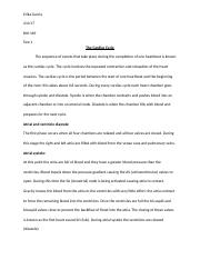 Anatomy Test 1 Essay