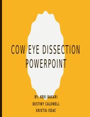 Cow Eye Dissection Powerpoint