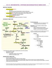 Biochem - 39 - Synthesis and Degradation of Amino Acids - BL
