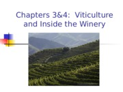 RHT 4400 Ch 3 & 4 Vinticulture and Inside the Winery(2)