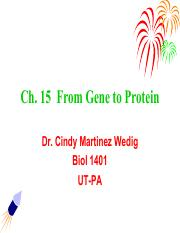 Chapter 15 from gene to protein