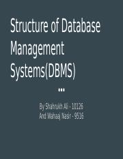 Structure of Database Management Systems(DBMS) Presentation