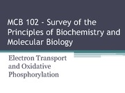 6- MCB 102 - Lecture - Su 14 - Electron Transport and Oxidative Phosphorylation